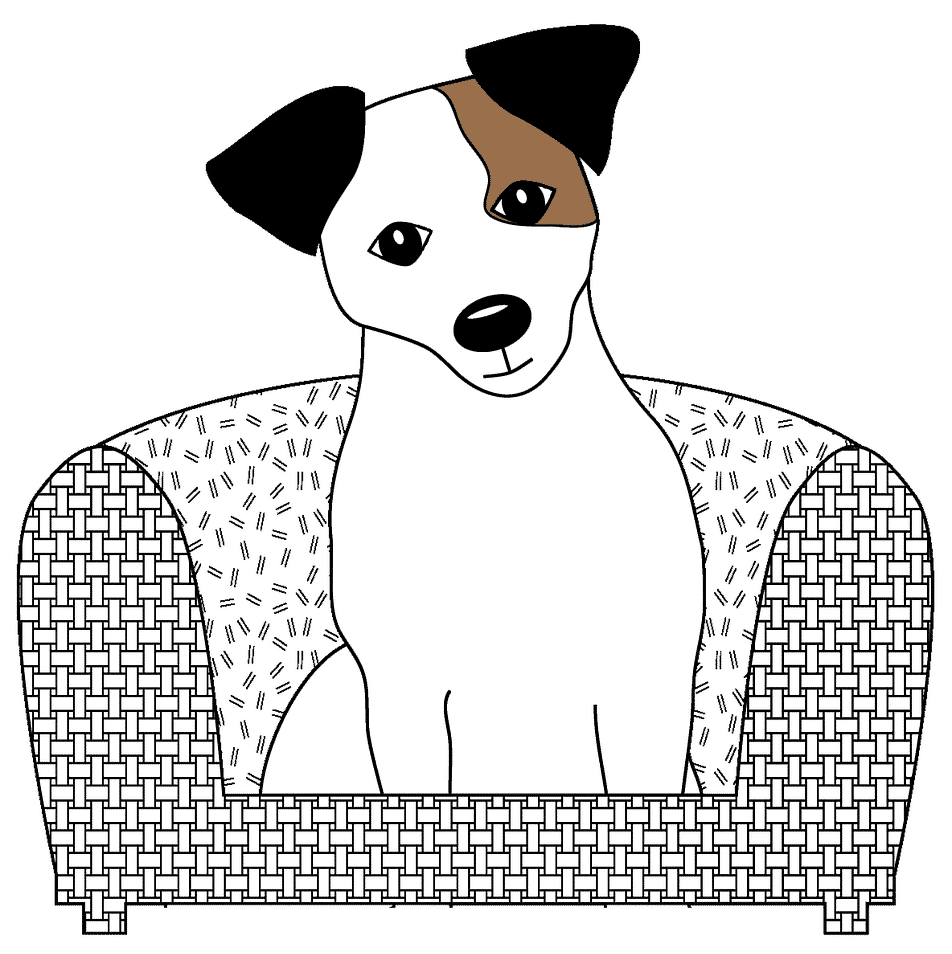 jack russell 1996220 1920